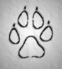avatar of Muad'Dib